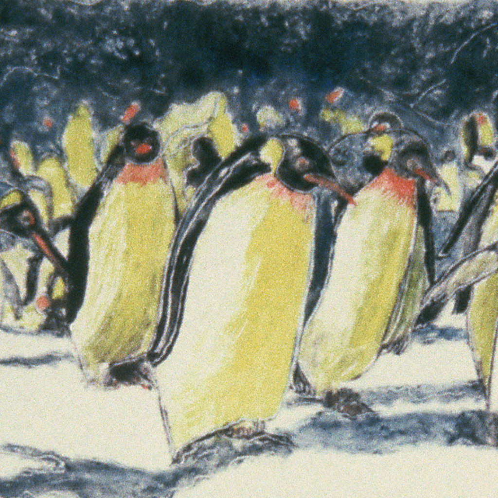 Rockhoppers penguin montype reproduced as giclee art prints