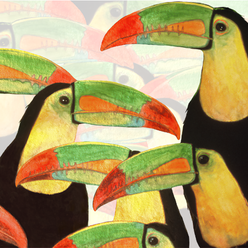 toucan bird art prints